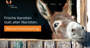 Eselcoaching.de